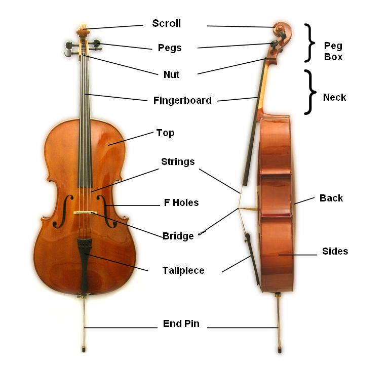 Cello Parts - Music Makers Calgary